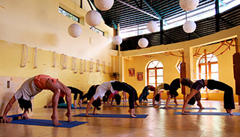hiyc-5-day-yoga-courses-3.jpg